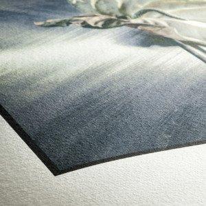 Atelier Fotodart - Papier Hahnemühle German Etching